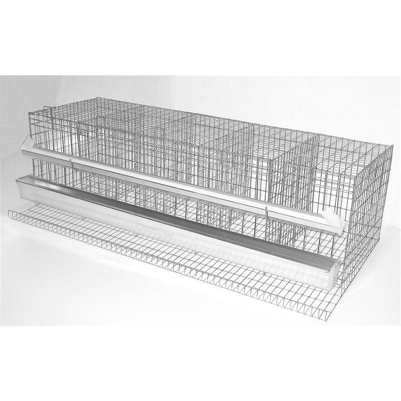 Cages à poules pondeuses