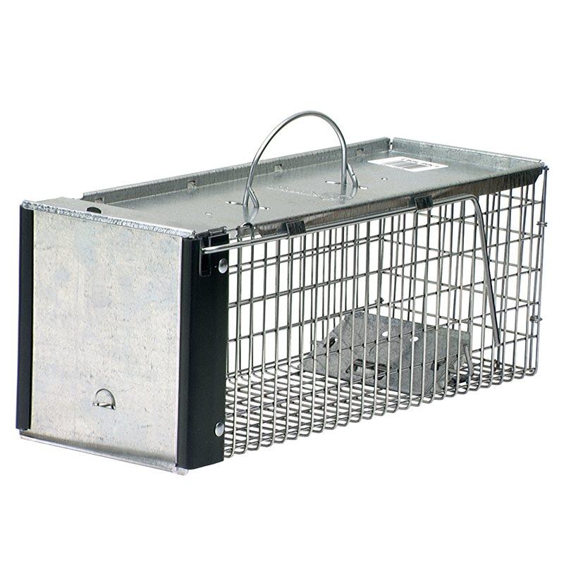 1 door traps