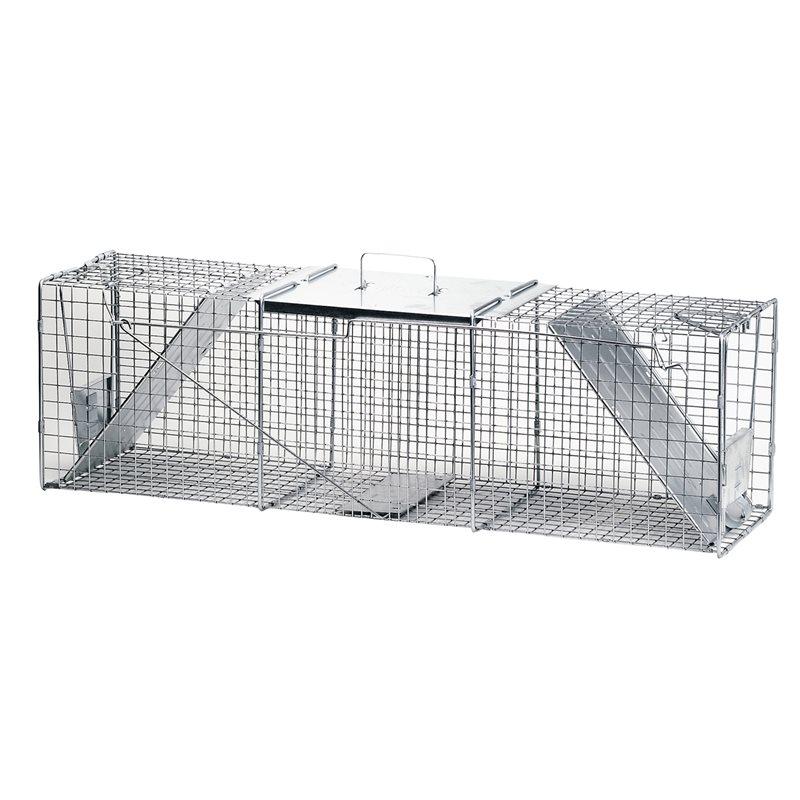 2 doors traps