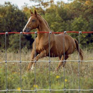 """Clôture 48"""" pour chevaux"""