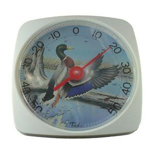Thermomètre (colvert)